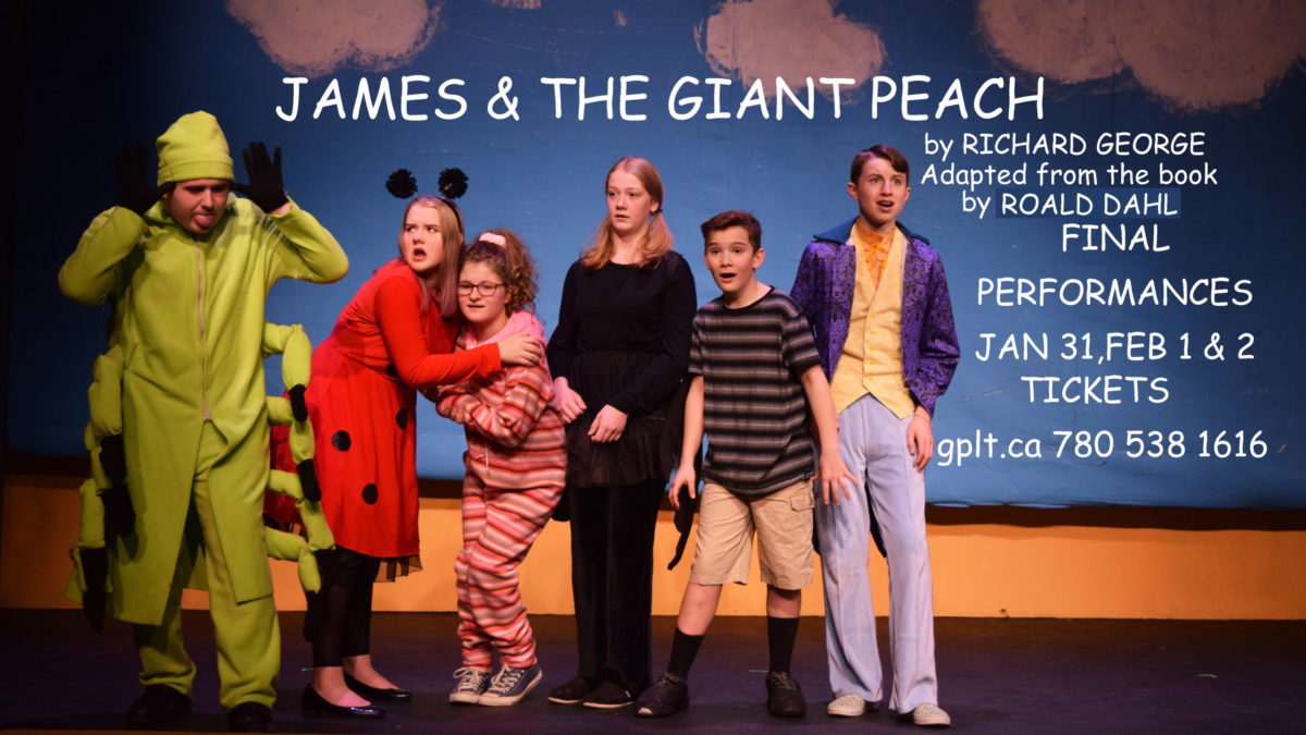 Final performances Jan 31 Feb 1 & 2